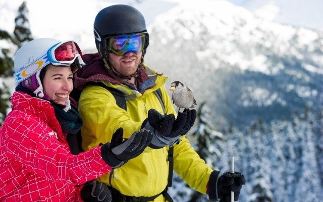 A Different Approach to Dating: The Ski Date
