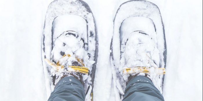 A Guide To Snowshoeing In Whistler