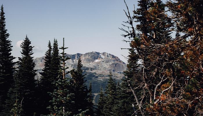Hike up Whistler Blackcomb